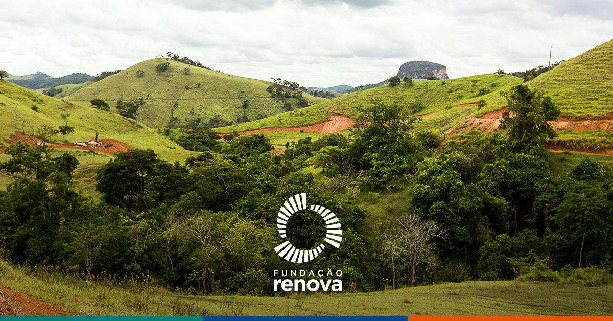 Brasil tem vantagens na economia de baixo carbono devido ao uso do solo e produção de commodities