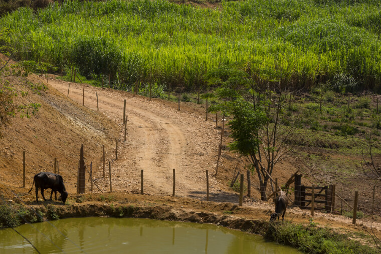 Fundação Renova realiza diagnósticos das propriedades rurais para planejar ações de retomada da atividade agropecuária.