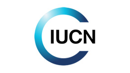 IUCN, a world reference in the conservation area, to work with the Renova Foundation on the recovery of the Doce River Basin