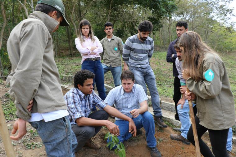 A equipe técnica passou por treinamento, que abordou metodologias e cuidados a serem adotados durante o plantio de mudas.