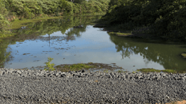 Renova Foundation opens canal to drain Juparana lagoon in Linhares (ES)
