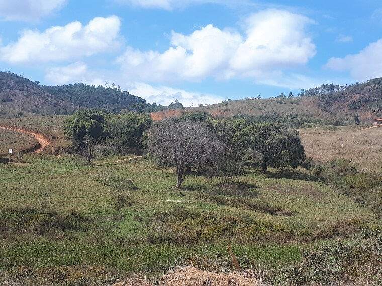 The terrain, called Lucila, was selected by the community and covers 390 hectares | Photo: Released