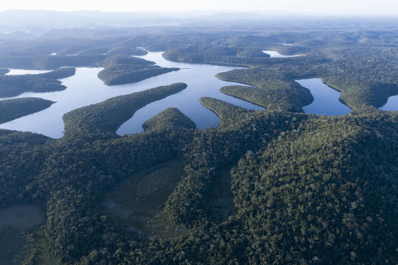 As ações compreendem cerca de 45 mil hectares ao longo da bacia do rio Doce. Foto: Nitro Imagens